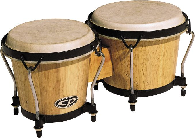 Types of Drums - The Wild World Of Drumming